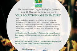 Hawke's Bay Airport Ltd supports Biodiversity
