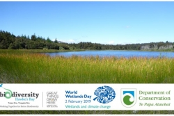 Wetlands and Climate Change, World Wetlands Day 2019