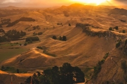 Te Mata Park named in world's top ten parks