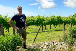 Rethinking the vineyard environment: Hawke's Bay winegrower implements biodiversity